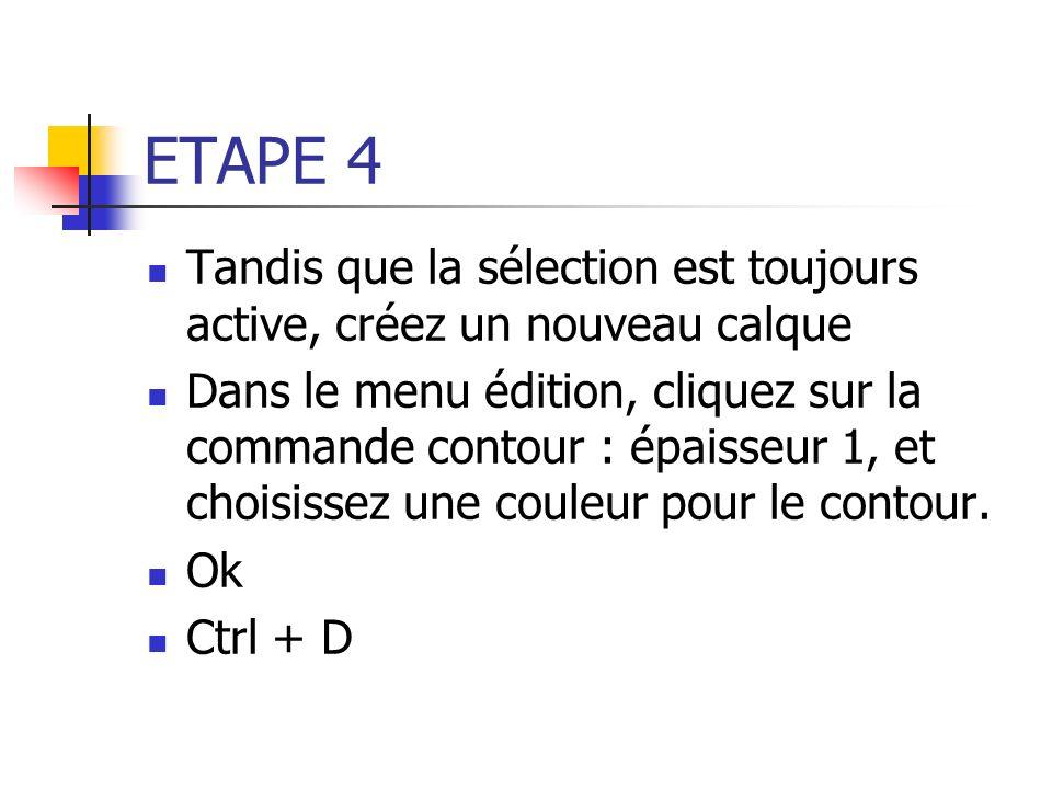 ETAPE 4 Tandis que la sélection est toujours active, créez un nouveau calque.