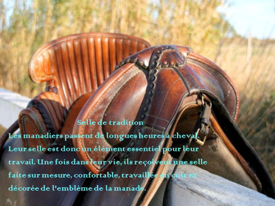 Selle de tradition Les manadiers passent de longues heures à cheval. Leur selle est donc un élément essentiel pour leur.
