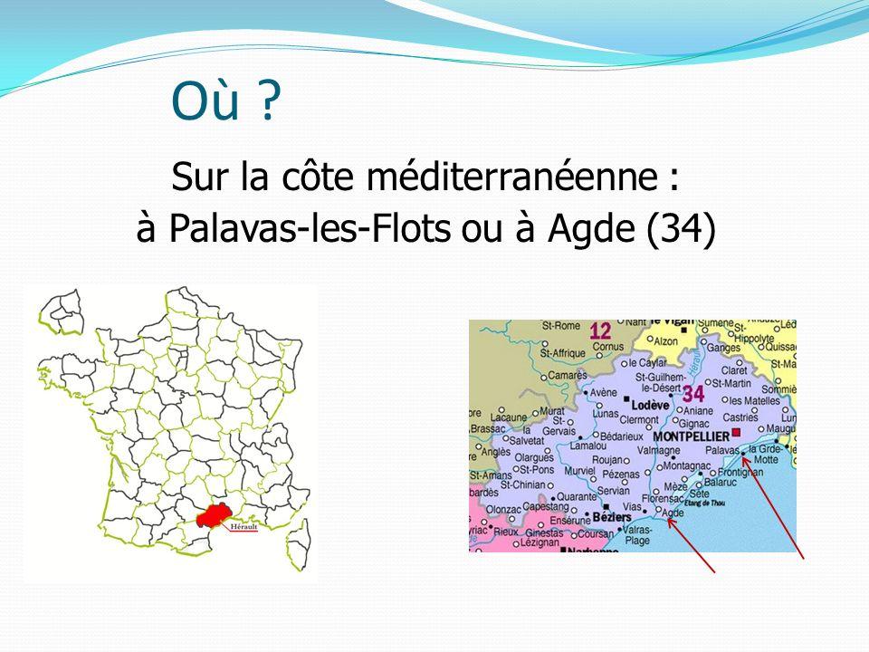 Sur la côte méditerranéenne : à Palavas-les-Flots ou à Agde (34)
