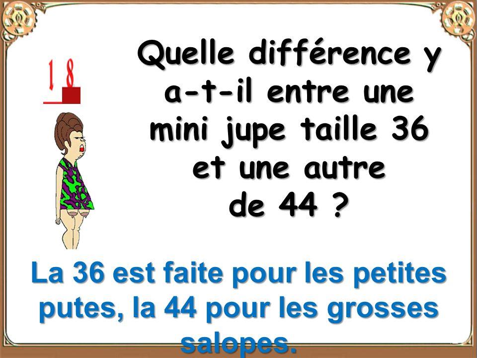Quelle différence y a-t-il entre une mini jupe taille 36 et une autre de 44