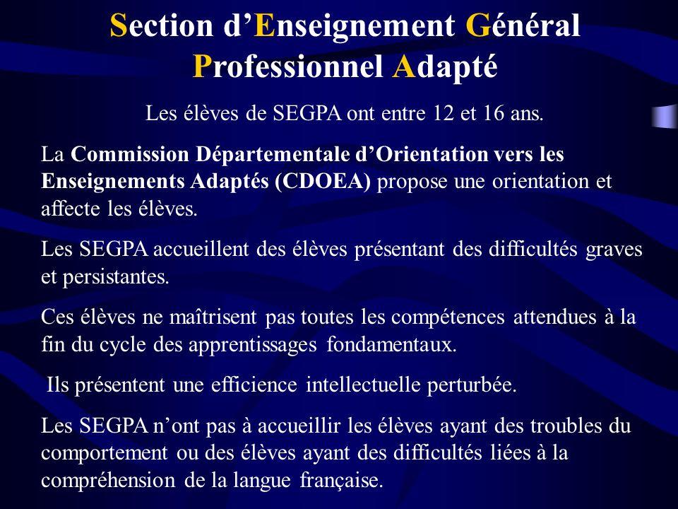 Section d'Enseignement Général Professionnel Adapté
