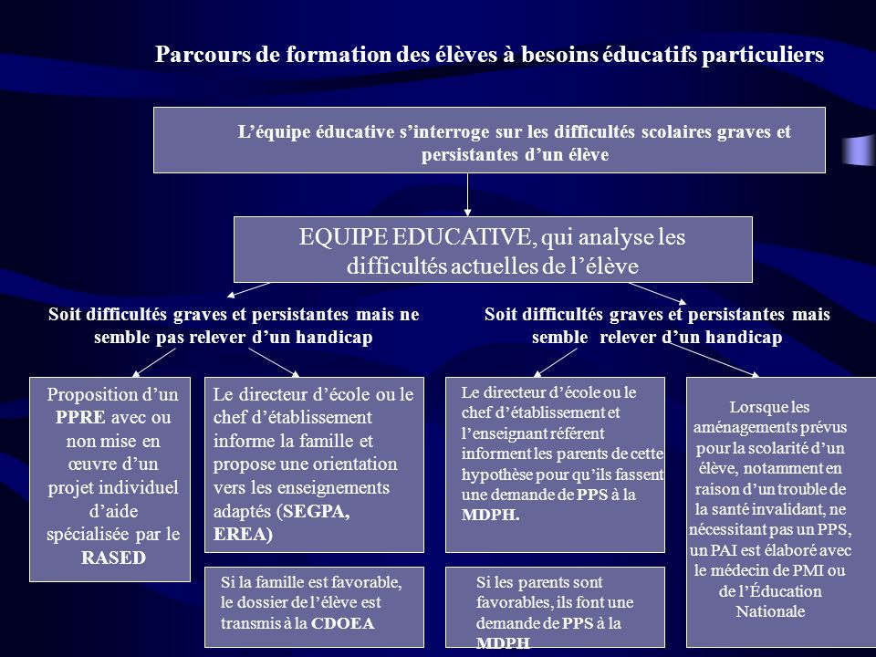 Parcours de formation des élèves à besoins éducatifs particuliers