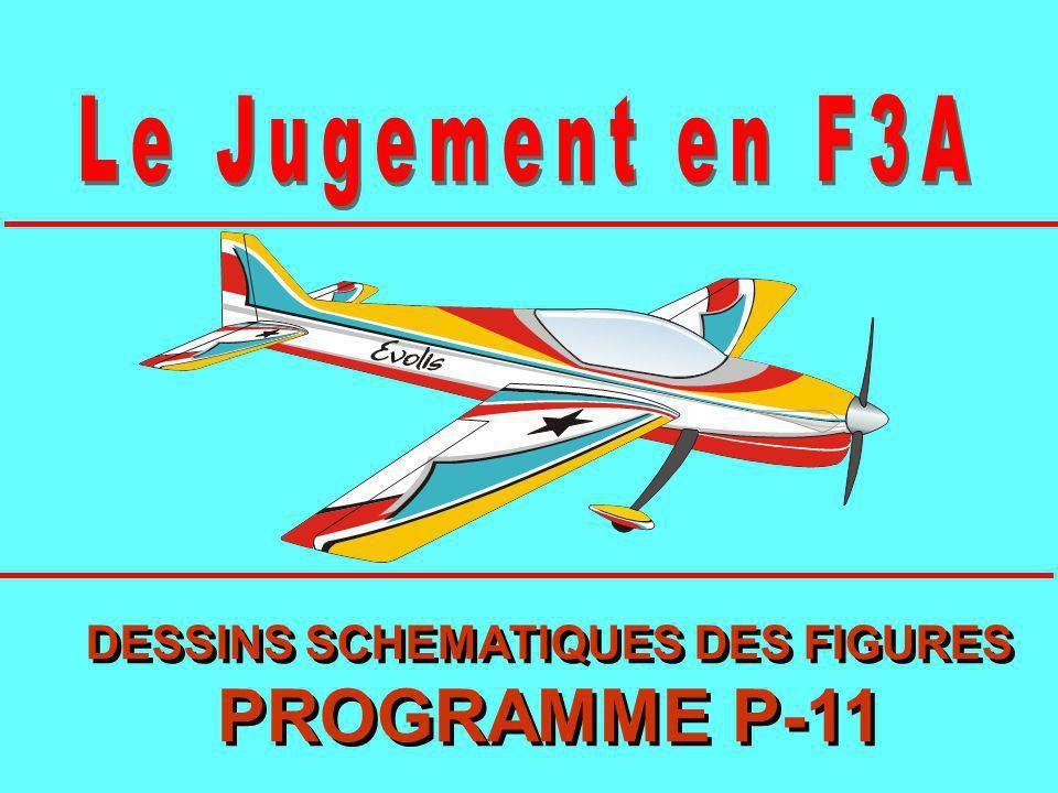 DESSINS SCHEMATIQUES DES FIGURES PROGRAMME P-11