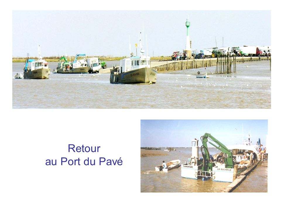 Retour au Port du Pavé