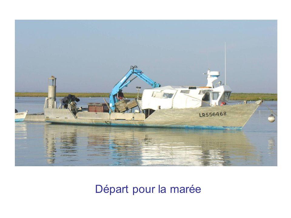 Départ pour la marée