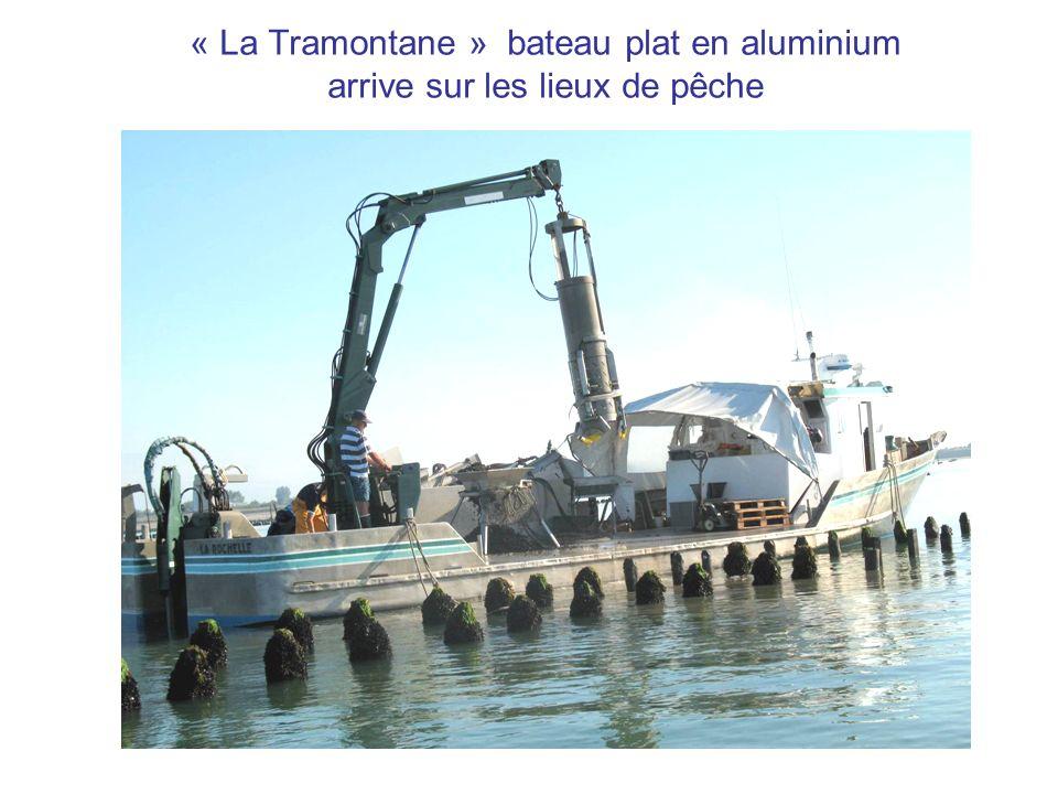 « La Tramontane » bateau plat en aluminium arrive sur les lieux de pêche
