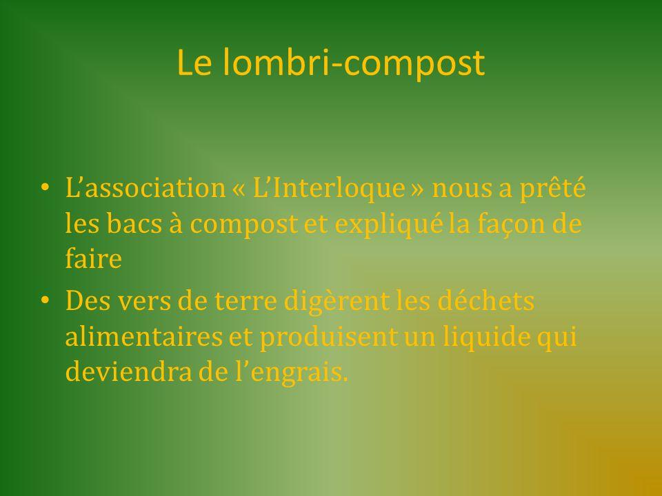 Le lombri-compost L'association « L'Interloque » nous a prêté les bacs à compost et expliqué la façon de faire.