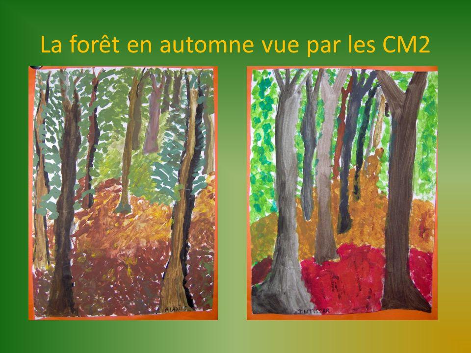 La forêt en automne vue par les CM2