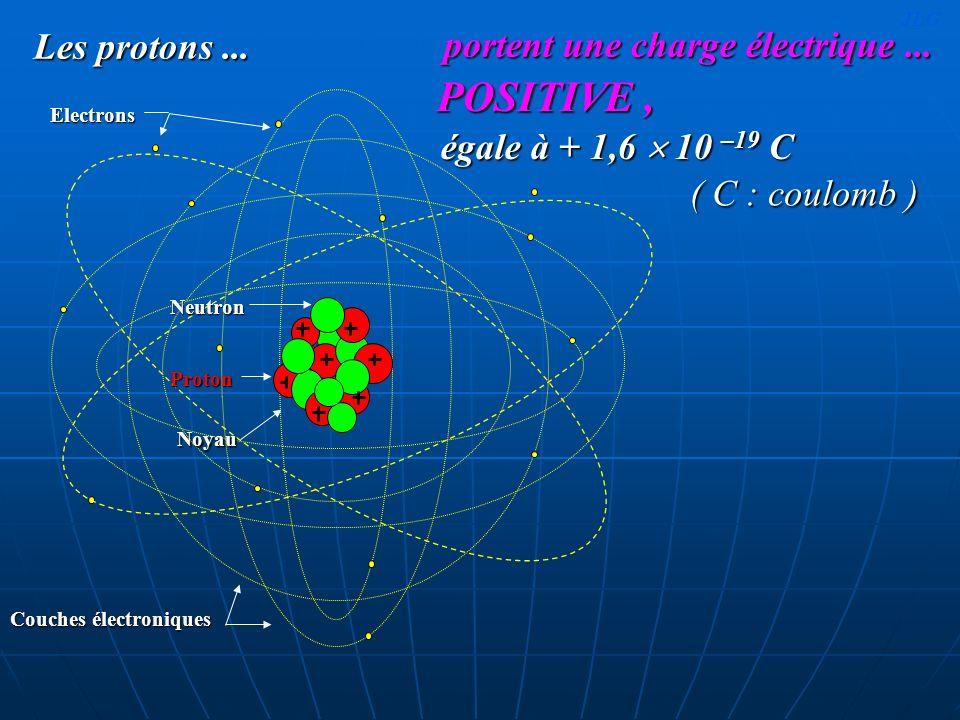 POSITIVE , portent une charge électrique ... Les protons ...