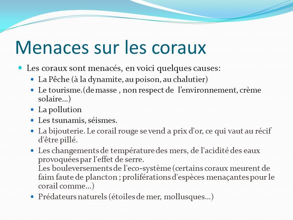 Menaces sur les coraux Les coraux sont menacés, en voici quelques causes: La Pêche (à la dynamite, au poison, au chalutier)