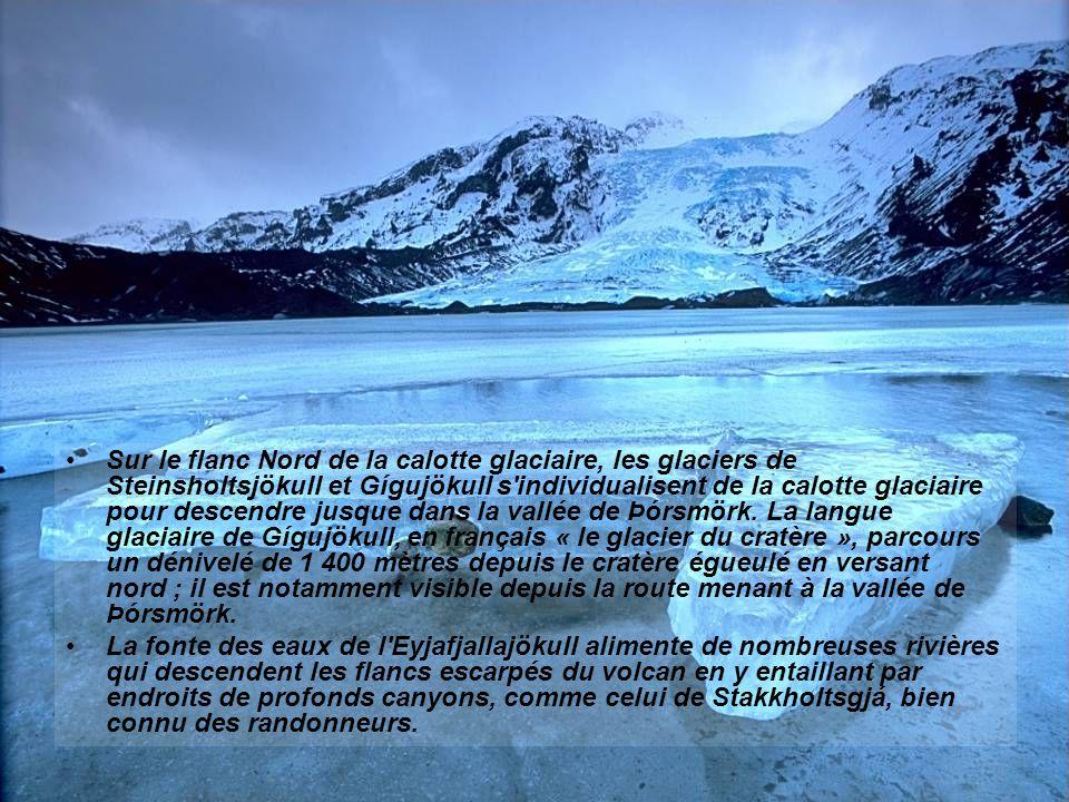 Sur le flanc Nord de la calotte glaciaire, les glaciers de Steinsholtsjökull et Gígujökull s individualisent de la calotte glaciaire pour descendre jusque dans la vallée de Þórsmörk. La langue glaciaire de Gígujökull, en français « le glacier du cratère », parcours un dénivelé de 1 400 mètres depuis le cratère égueulé en versant nord ; il est notamment visible depuis la route menant à la vallée de Þórsmörk.