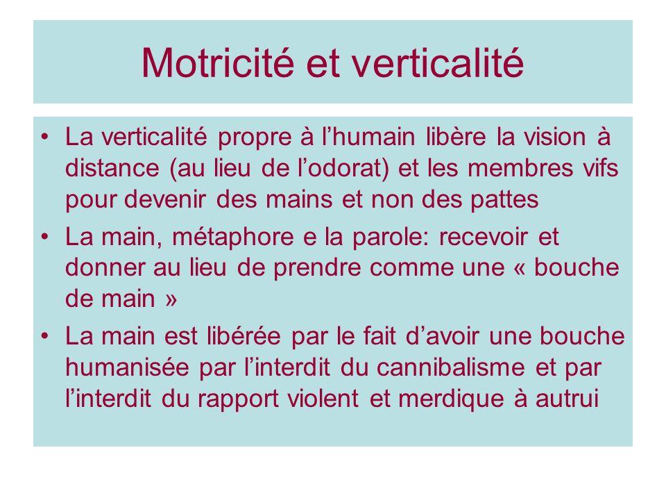 Motricité et verticalité