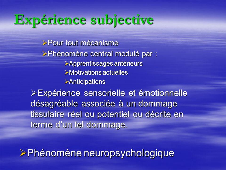 Expérience subjective