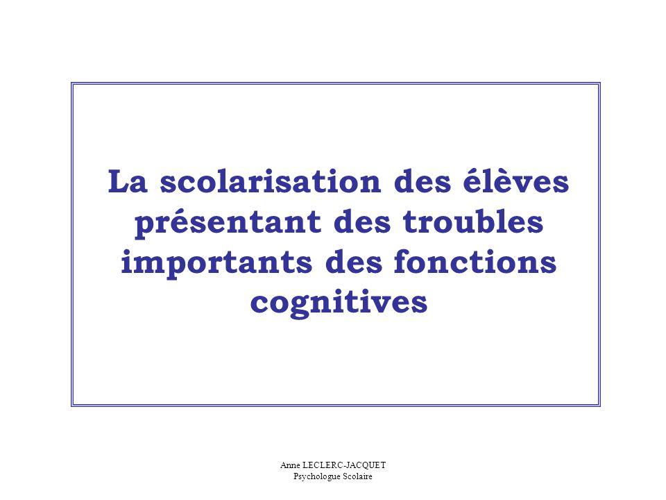 La scolarisation des élèves présentant des troubles importants des fonctions cognitives