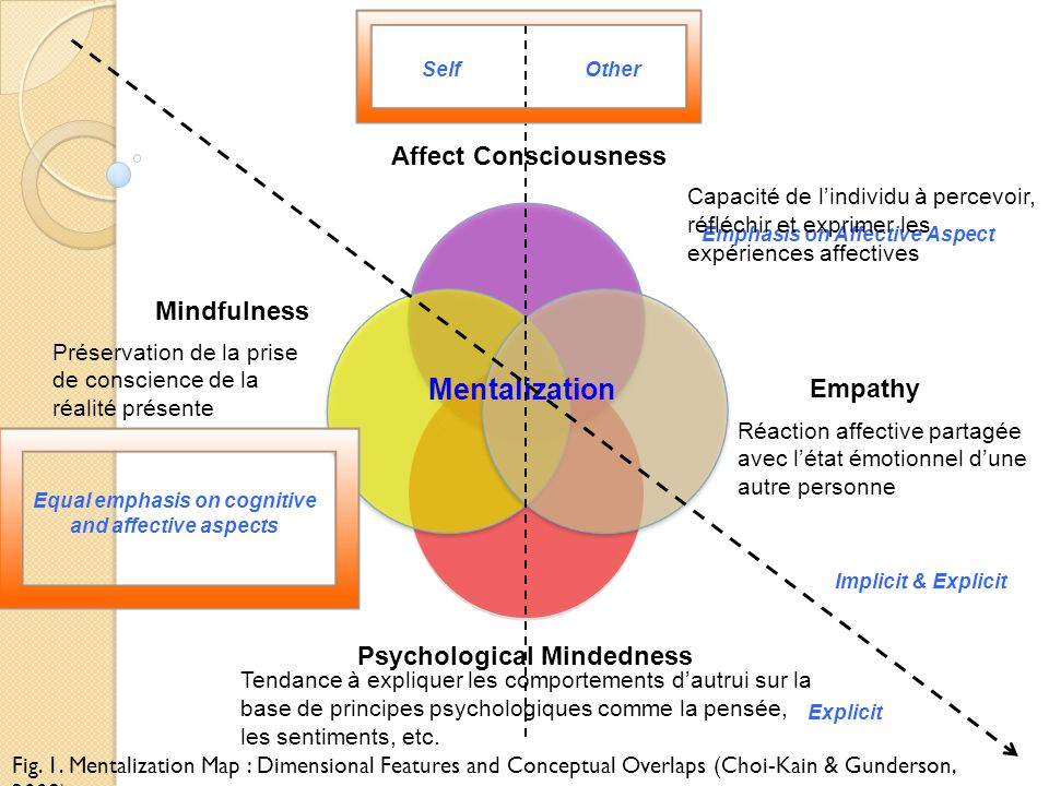 Mentalization Affect Consciousness Mindfulness Empathy