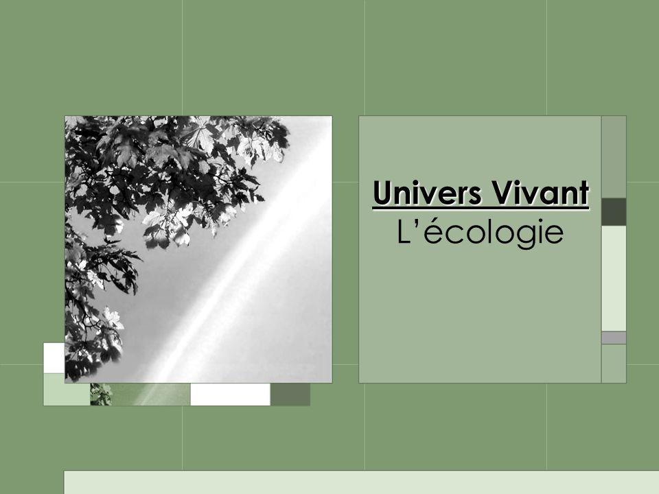 Univers Vivant L'écologie