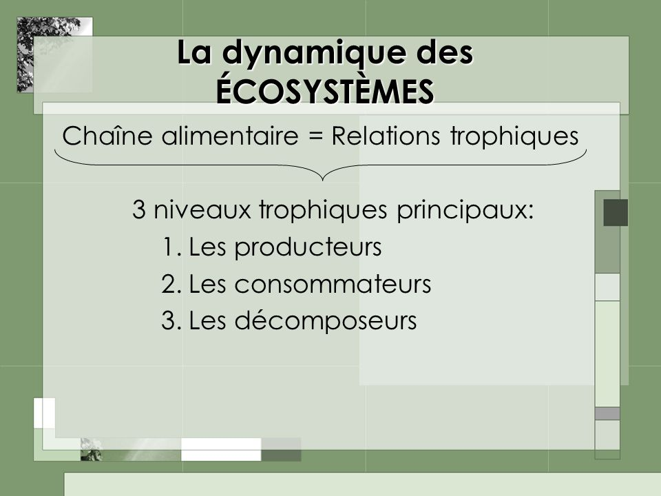 La dynamique des ÉCOSYSTÈMES