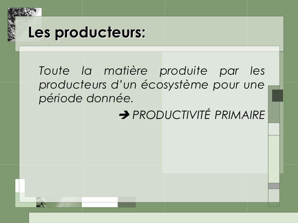 Les producteurs: Toute la matière produite par les producteurs d'un écosystème pour une période donnée.