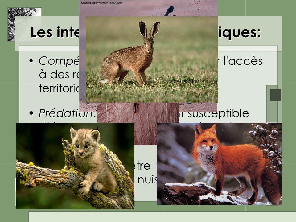 Les interactions interspécifiques: