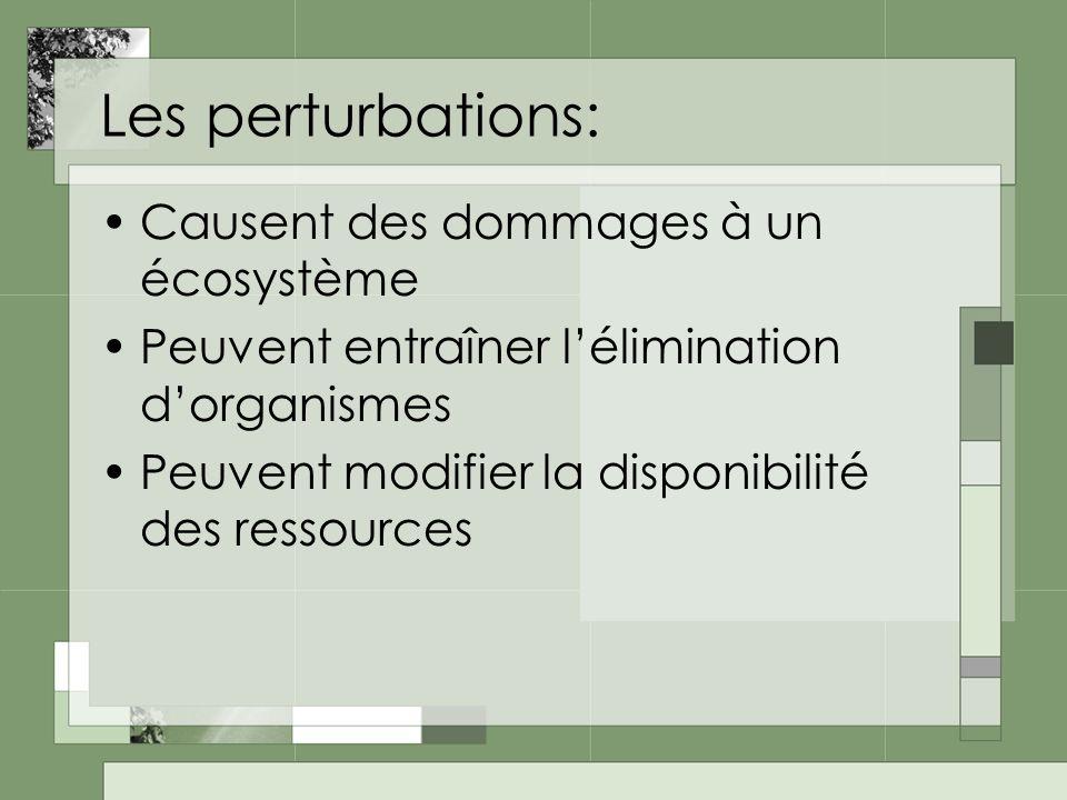 Les perturbations: Causent des dommages à un écosystème