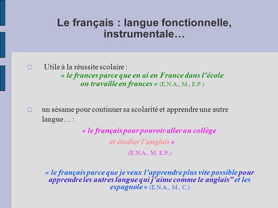 Le français : langue fonctionnelle, instrumentale…