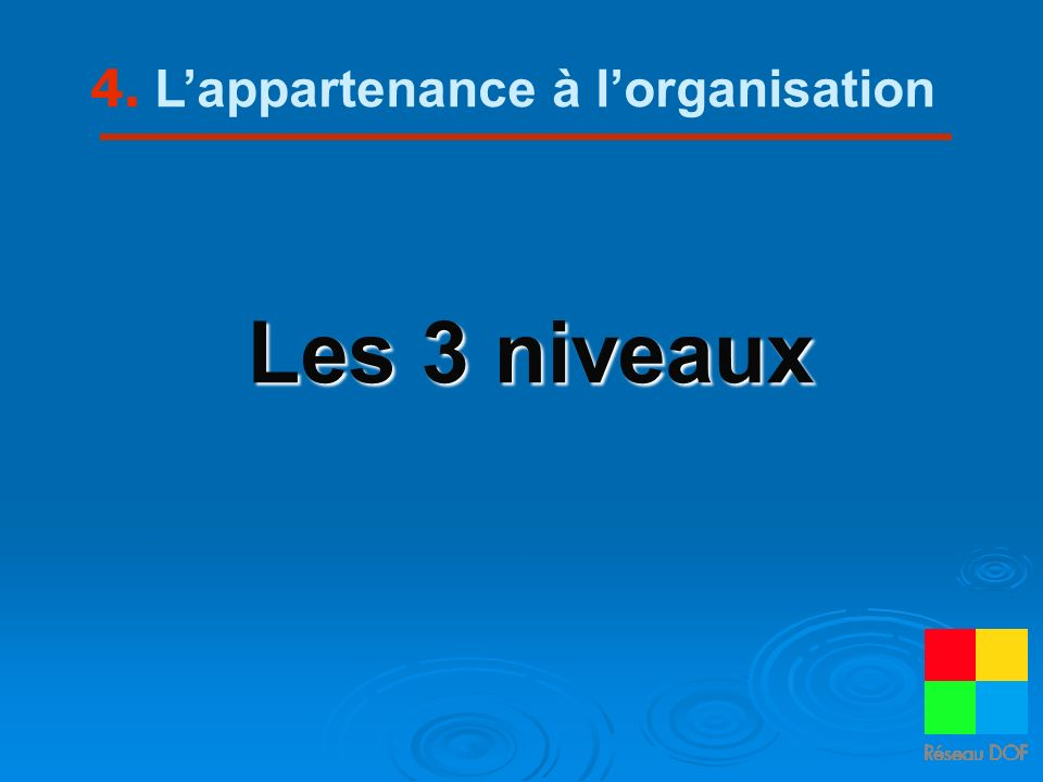 4. L'appartenance à l'organisation