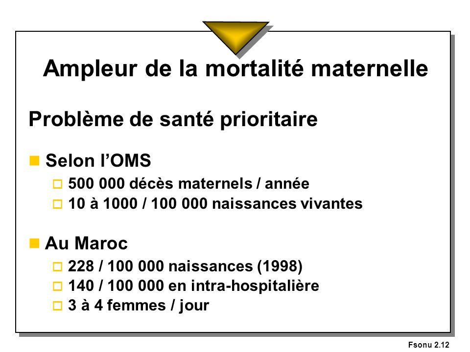 Ampleur de la mortalité maternelle
