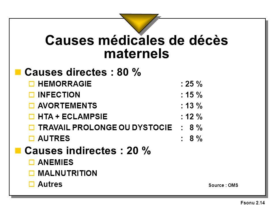 Causes médicales de décès maternels