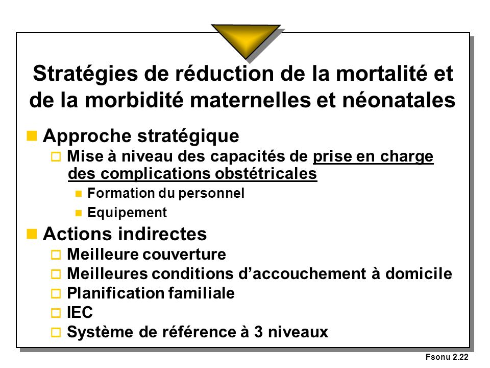 Fsonu 2.22 Stratégies de réduction de la mortalité et de la morbidité maternelles et néonatales. Approche stratégique.