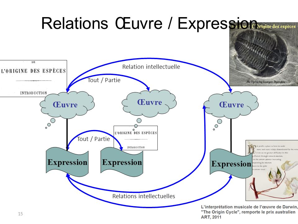 Relations Œuvre / Expression