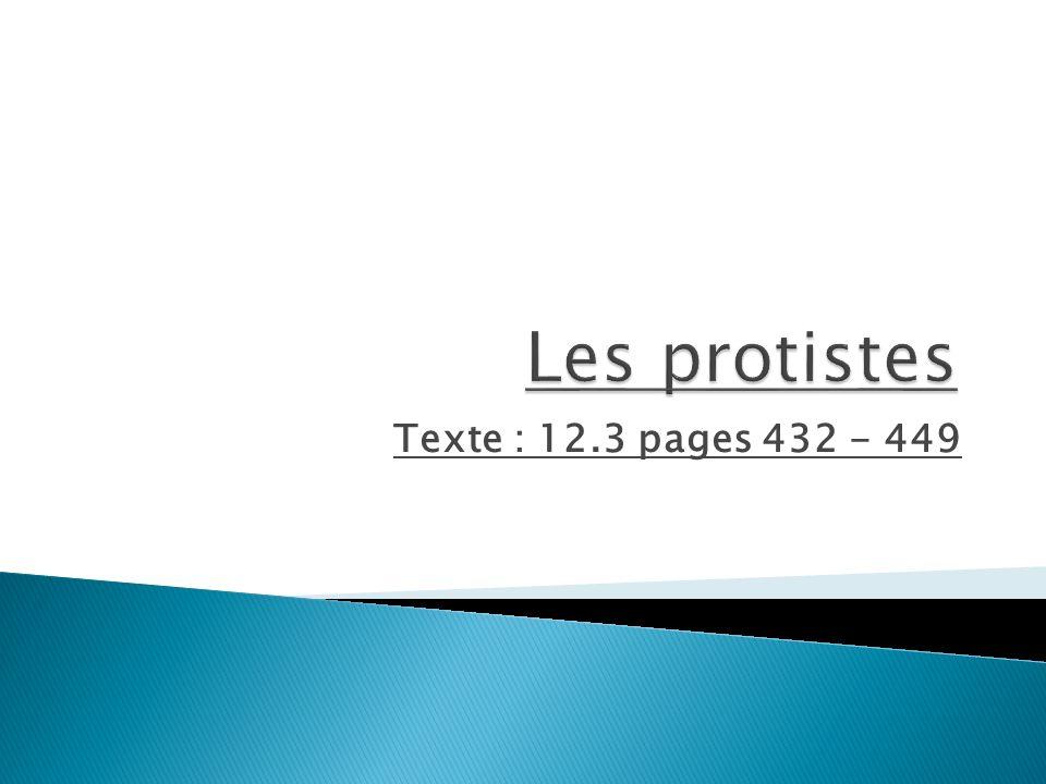 Les protistes Texte : 12.3 pages 432 - 449