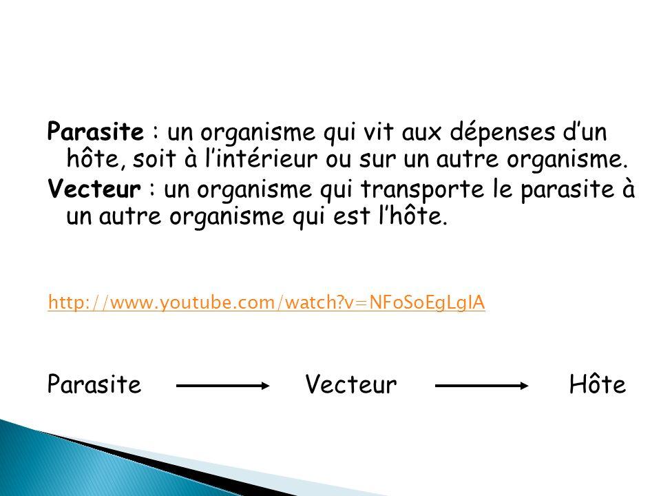 Parasite : un organisme qui vit aux dépenses d'un hôte, soit à l'intérieur ou sur un autre organisme.