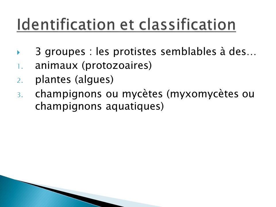 Identification et classification