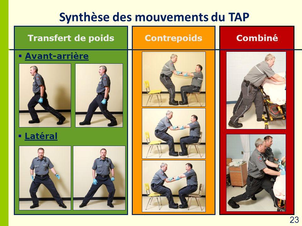 Synthèse des mouvements du TAP