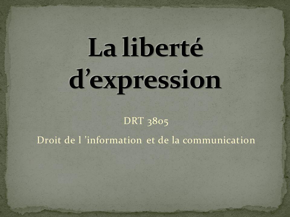 La liberté d'expression