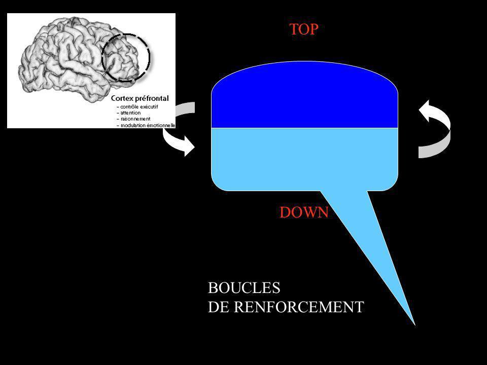 TOP DOWN MÉMOIRE AFFECT BOUCLES DE RENFORCEMENT