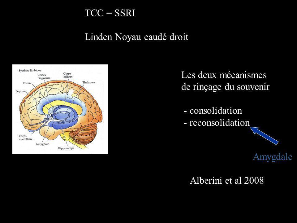 TCC = SSRI Linden Noyau caudé droit. Les deux mécanismes. de rinçage du souvenir. - consolidation.