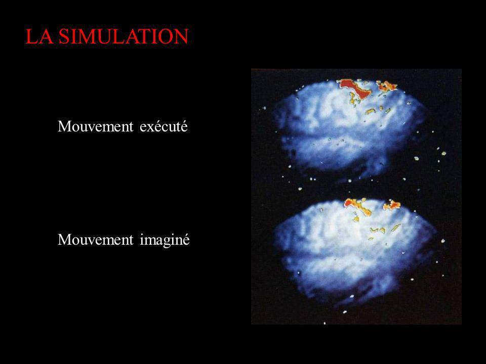 LA SIMULATION Mouvement exécuté Mouvement imaginé Substitution