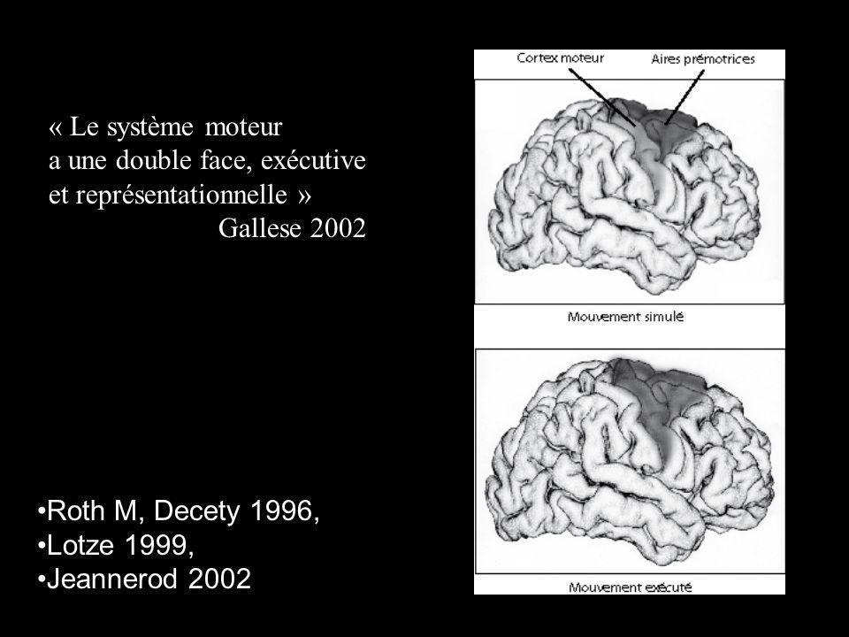 « Le système moteur a une double face, exécutive. et représentationnelle » Gallese 2002. Roth M, Decety 1996,