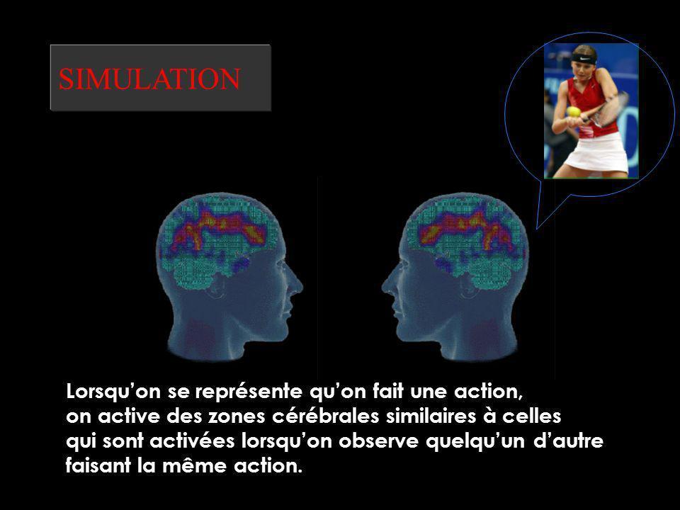 SIMULATION Le niveau suivant est celui de la simulation