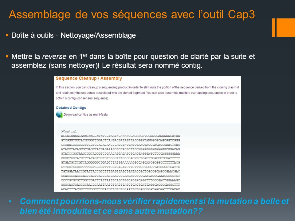 Assemblage de vos séquences avec l'outil Cap3