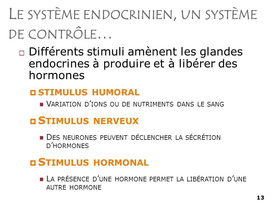 Le système endocrinien, un système de contrôle…
