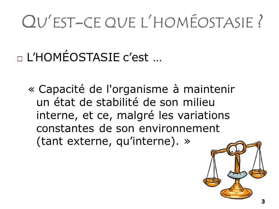 Qu'est-ce que l'homéostasie