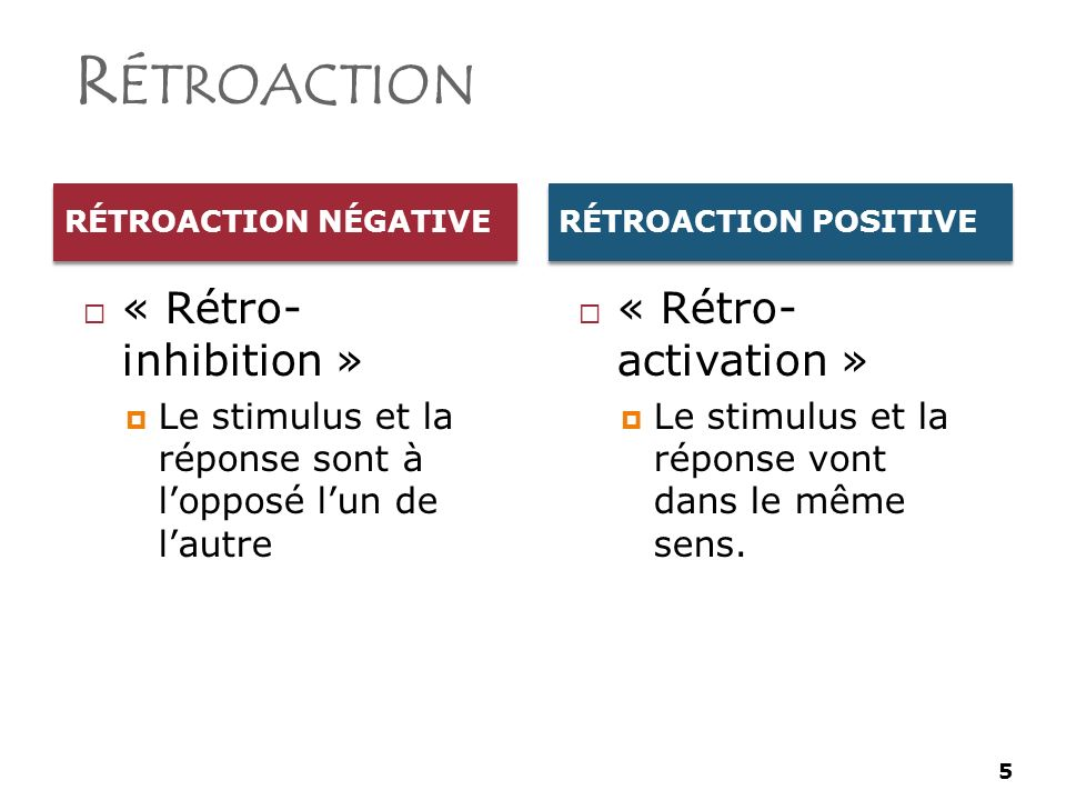 Rétroaction « Rétro- inhibition » « Rétro- activation »
