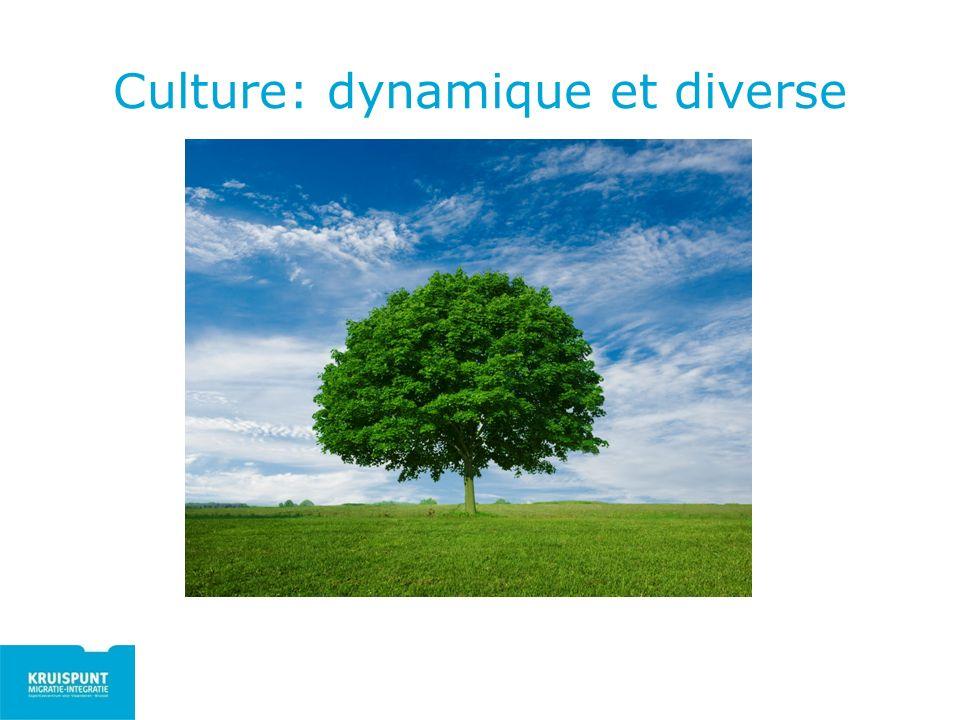 Culture: dynamique et diverse