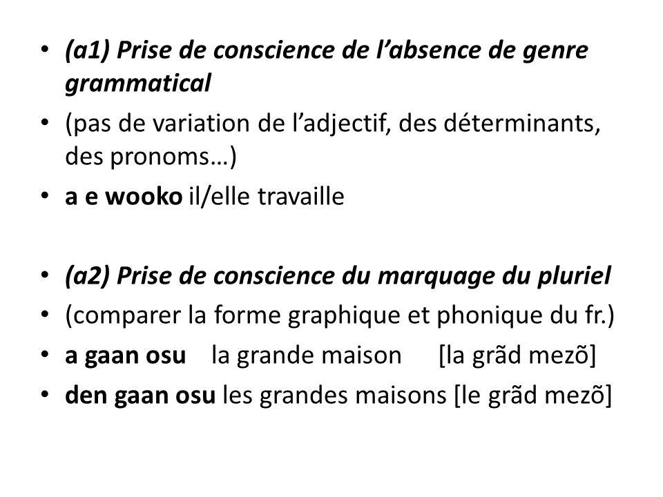 (a1) Prise de conscience de l'absence de genre grammatical