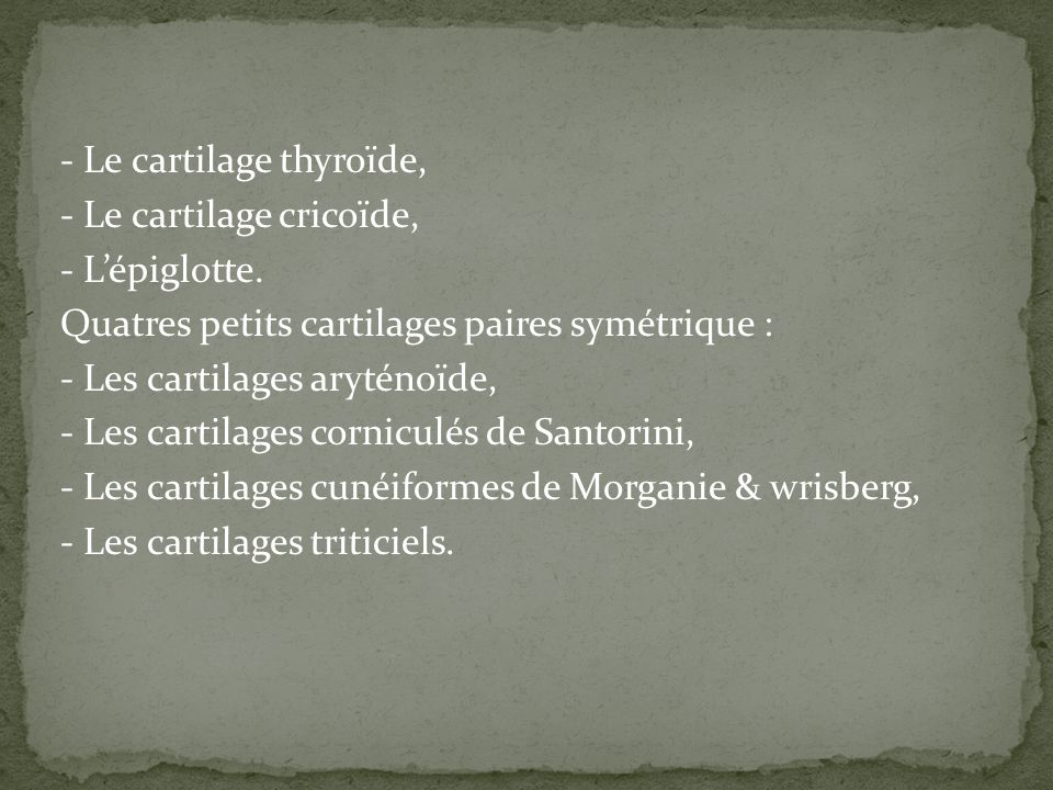 - Le cartilage thyroïde, - Le cartilage cricoïde, - L'épiglotte