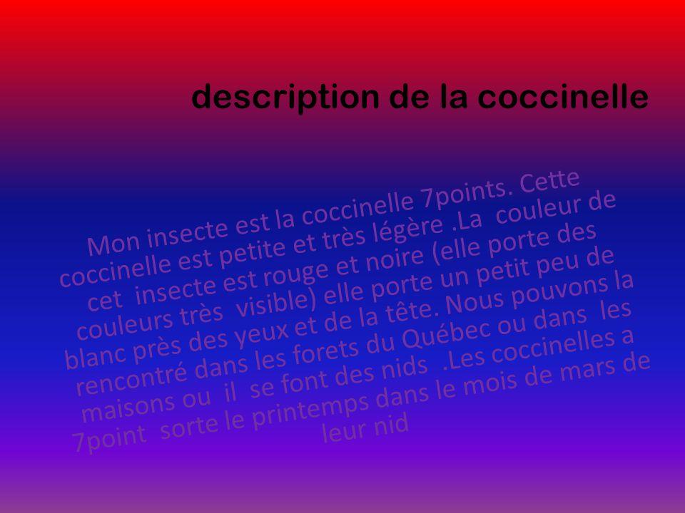 description de la coccinelle