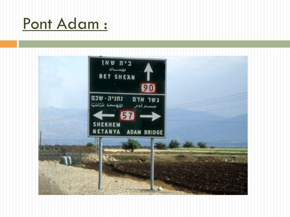 Pont Adam : Objectifs de la formation et résultats attendus et/ou compétences apprises.