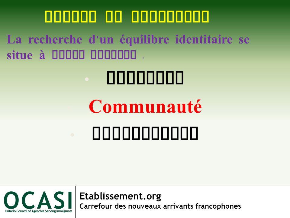 Individu Communauté Institution NIVEAU DE RECHERCHE